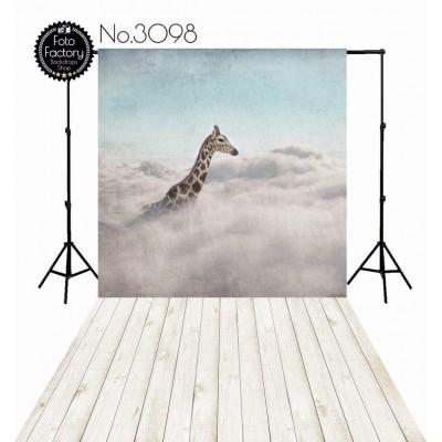Backdrop 3098
