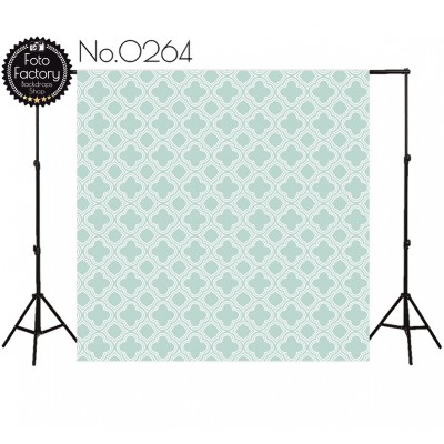 Photographic backdrop 2813