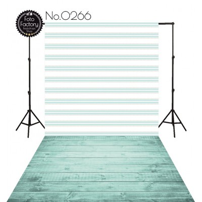 Photographic backdrop 2816