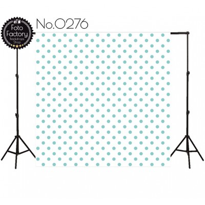 Photographic backdrop 2838
