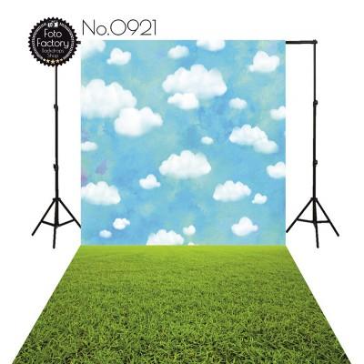 Backdrop 921