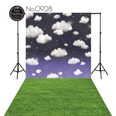 Backdrop 928