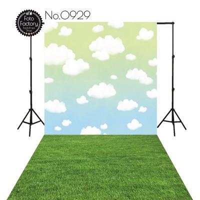 Backdrop 929