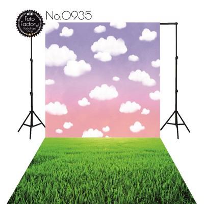 Backdrop 935