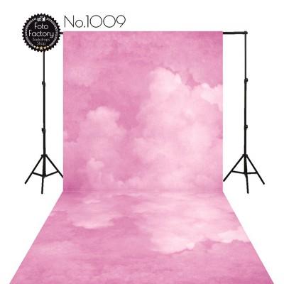 Backdrop 1009