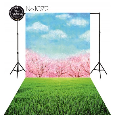 Backdrop 1072