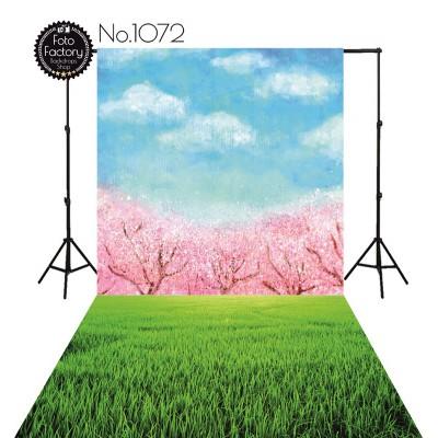 Tła fotograficzne 1072