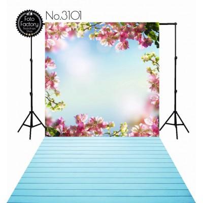 Backdrop 3101