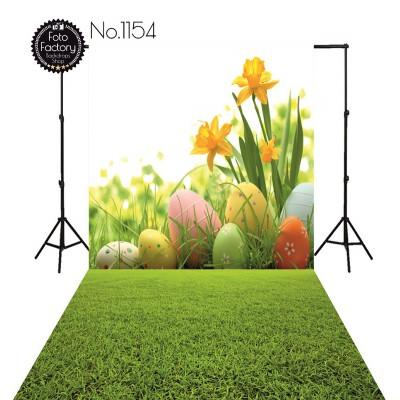 Backdrop 1154