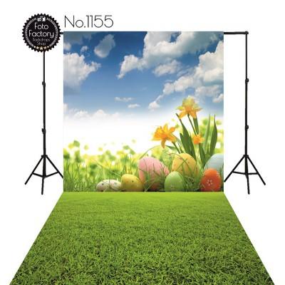 Backdrop 1155