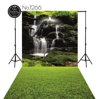 Backdrop 1266