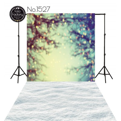 Backdrop 1527