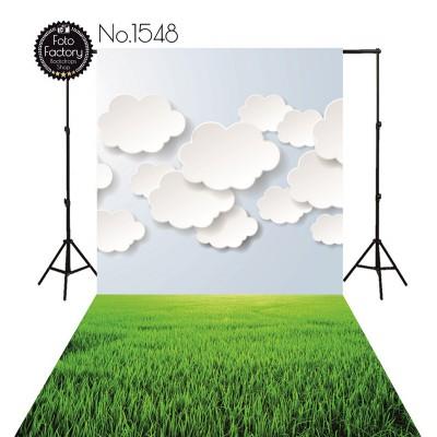 Tła fotograficzne 1548