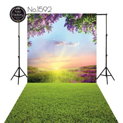 Tła fotograficzne 1592