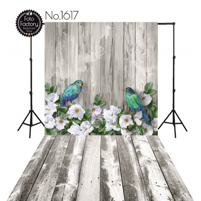 Backdrop 1617