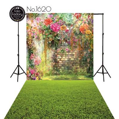 Backdrop 1620