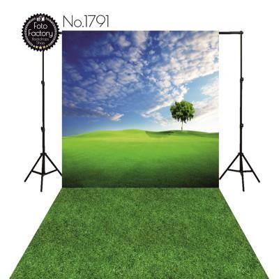 Tła fotograficzne 1791