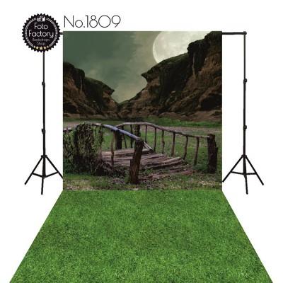 Backdrop 1809