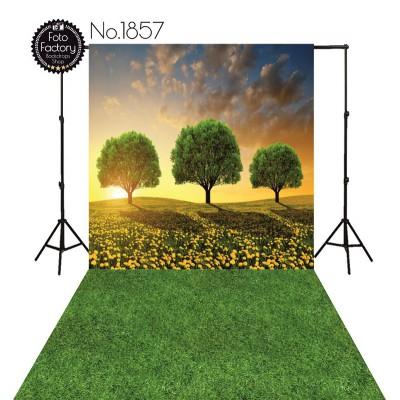Backdrop 1857