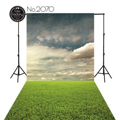 Backdrop 2070