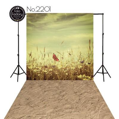 Backdrop 2201