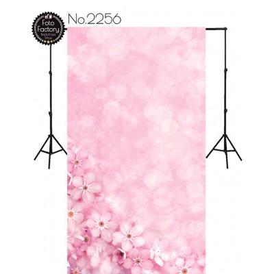 Backdrop 2256