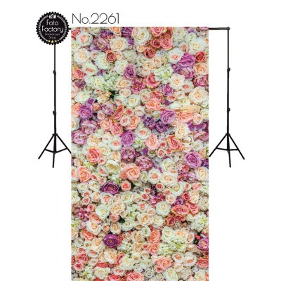 Backdrop 2261