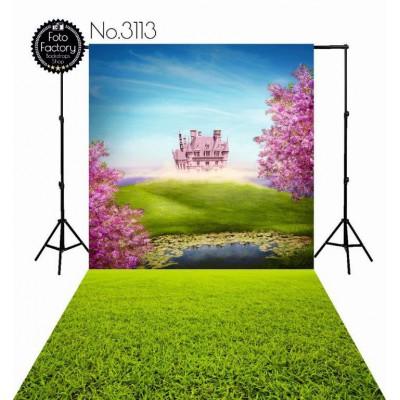 Backdrop 3113