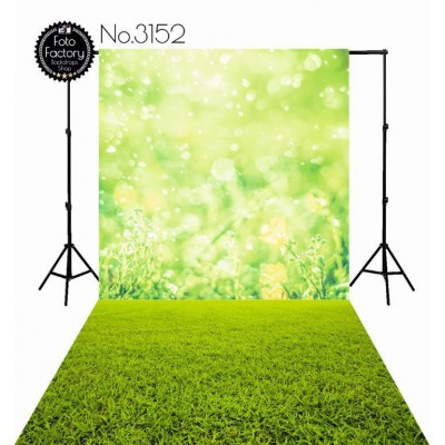 Backdrop 3152