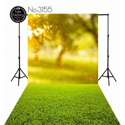 Backdrop 3155
