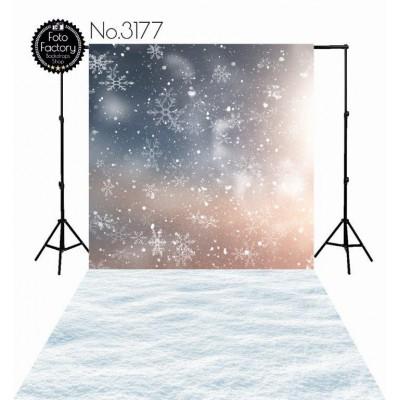 Backdrop 3177