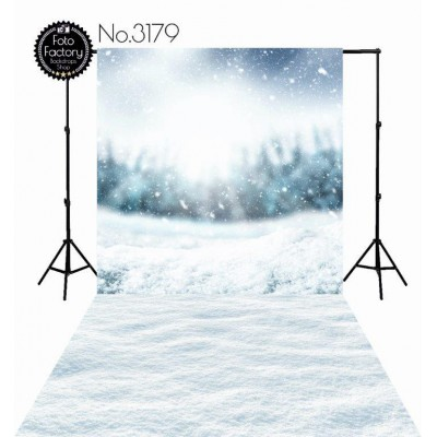 Backdrop 3179