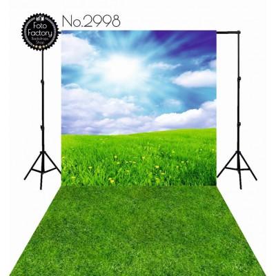 Tła fotograficzne 2998